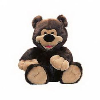Медведь Тимофей