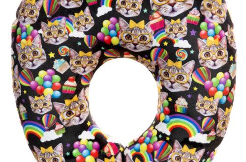 9.288.1 Дорожные коты с радугой