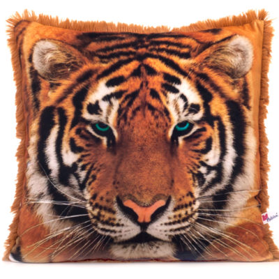 Амурский тигр  30.49.1
