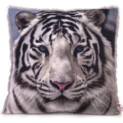 Бенгальский тигр  30.48.1
